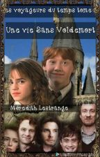 Harry Potter  Une vie sans Voldemort. by sylvieribot