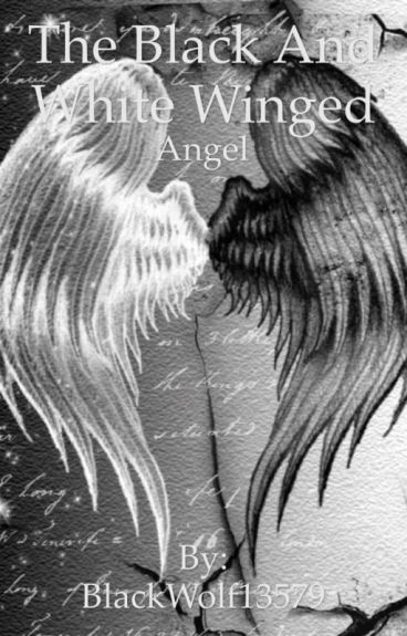 The Black and White Winged Angel (Being edited slowly)