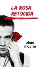 LA ROSA RETORCIDA by MaRr1D
