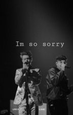 Im so sorry by realhappenen