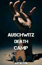 Auschwitz Death Camp by lullabybeth96