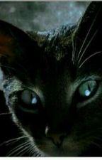 Pisica Marerului SlenderMan by Rosewatwat