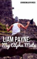 Liam Payne: My Alpha Mate by AndieMalikPayne93