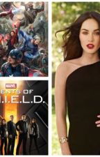 Avengers,Agents of S.H.I.L.D and my by mmmichalka