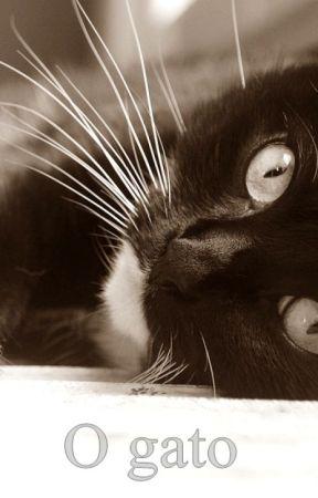 O Gato by WV_Neves