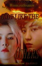 Chanbaek || Not Like the Others [Traducción] by SafiroAngella