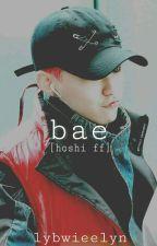bae [hoshi ff] by lybwieelyn