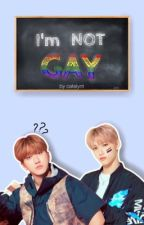 I'm Not Gay || Changlix  by catelynt