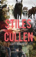 Stiles Cullen(Discontinued) by happykitty301