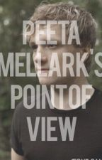 The Hunger Games, Peeta's POV by cheniechen