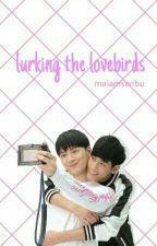 lurking the lovebirds by malamseribu