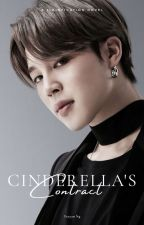 CINDERELLA CONTRACT | pjm √ by jiminfication