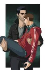 The Truth, The Lies, and the Love~ Slowly Fading book 3 (Sterek) by Directioner5340