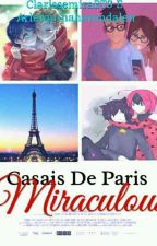 casais de paris ( Miraculous) by clarissemiraBTS