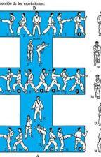 mi vida es el taekwondo by MariaRicoSerrano