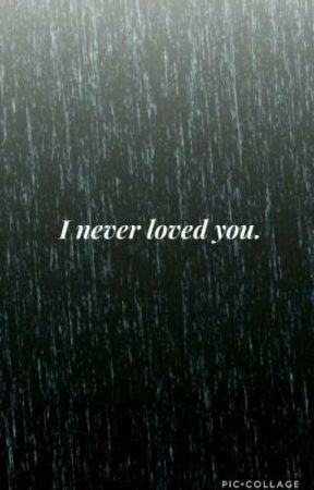 I never loved you. (Hamliza) by hamlizafluff