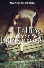 Falling For The Dangerous by SanDiegoBeachBumm