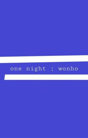 one night ;wonho by trippedwritter