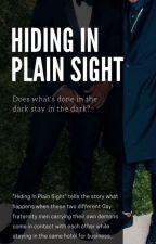 Hiding In Plain Sight (On Hiatus) by BeyondTheSet