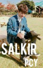 Salkir>>pcy by cayeol