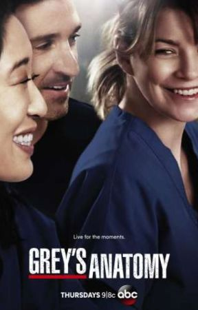 Zitate aus Greys Anatomy - Teil 3 - Wattpad