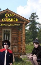 Camp Crushed noah schnapp X reader by notreallyirl