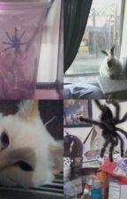 All My Pets by GoofyGooberKali