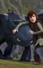 Hiccup x Toothless  by NightFury2011