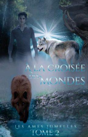 A la croisée des Mondes by cathycat911