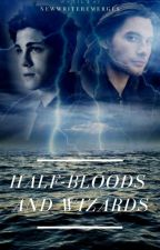 Half-bloods And Wizards by NewWriterEmerges