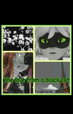 The Love From A Black Cat (Cat Noir X Reader) by LeafySenpaii