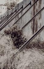 GIF SERIES ▸ Multi Fandom by outsidersxobsessed