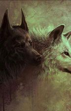 The Last She Wolf by buysfunreads