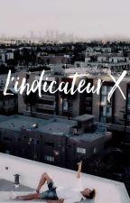 L'indicateur X by jaykey77