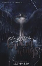The Boy With The Broken Wings | ✓ by bitteur