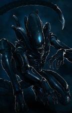 Yandere Female Xenomorphs x Futa!Half Xenomorph! Fem!Reader by Nighttra