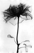 [Shortfic/Meanie] Flower by Wonyun