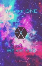 EXO Fanfiction//We are ONE! by littl_exo-L
