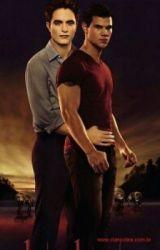 Gay twilight slash fiction