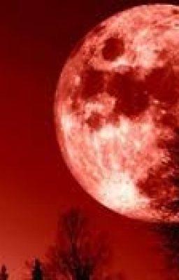 Đọc truyện Cô gái trinh thám và Tên sát nhân của ánh trăng