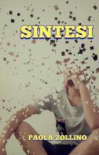 SINTESI by PaolAmici