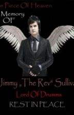 if they're perfect, you love them (the rev/avenged sevenfold fanfic) by savannahbvba7x