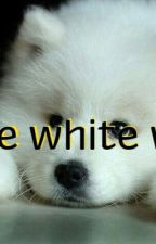 Little white wolf (paul lahote ls) by dark_angel2909