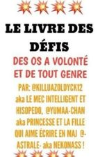 Livre des Défis by KiruaZoldyck12