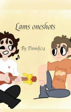 Lams oneshots  by Danidj04