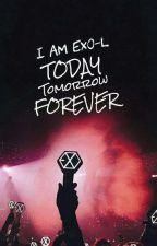 Tentang exo dan exol by baekkiyuni_04