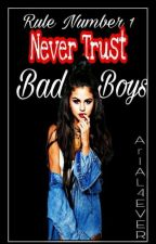 Never trust Bad boys✅ by Arial4ever