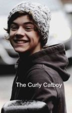 The Curly Catboy {Larry Stylinson} by HipstuhPls
