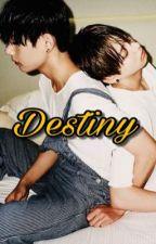 destiny // vkook [terminada] by xBabux