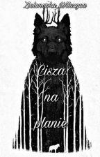Cisza na planie by Zielonooka_Wilczyca